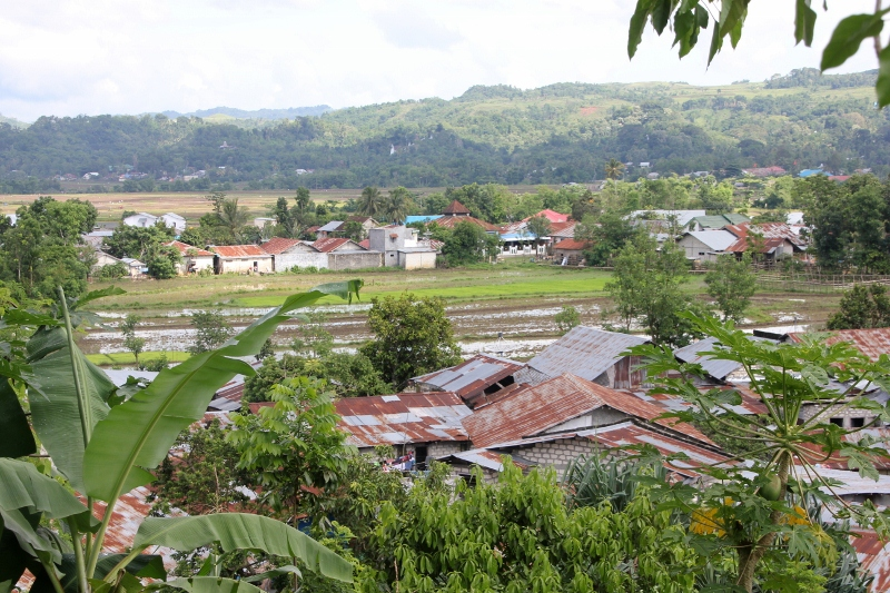 view from the hill, across houses and rice paddies