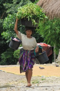 woman carrying the shopping