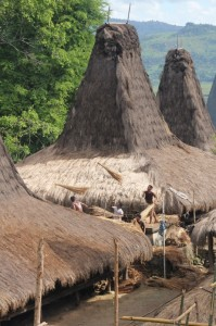 and roof repairs in Praigoli