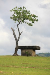 lonely tomb on the pasola field of Hobakala
