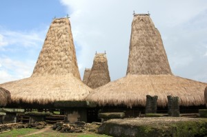 a typical Kodi village, dominated by extremely tall houses
