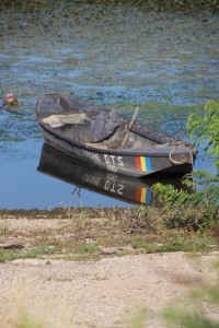 rowing boat on the Danube