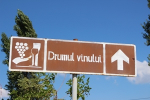 the wine route, signposted (sometimes)