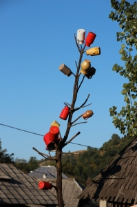 pot tree