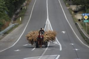 progress of sorts: old ways of transport, new roads