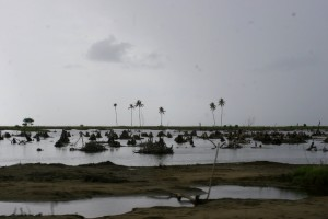 the coast between Meulaboh and Banda Aceh still shows the traces of the tsunami
