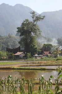 a village in the vicinity of Jangga