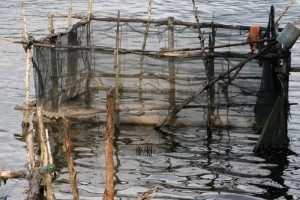 nets to contain the catch (?)