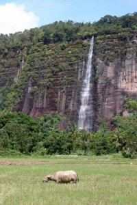 one of the many water falls in the Harau Canyon