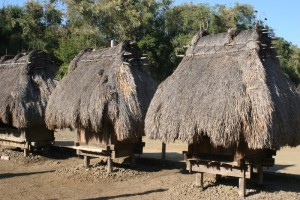 and Bhagas, little huts on stilts
