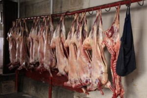 fresh meat being sold wholesale to the butcher shops