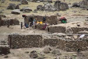 Afghan people gathered around animal pens