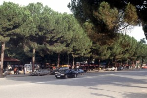 quintessential Tirana: bar-bufets along the pavement, and Mercedeses on the road