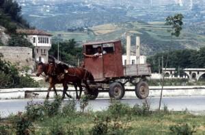 horse-drawn cart, an impressive construction
