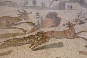 detail of the wild animals