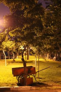 one of the small parks in Ardabil, at night