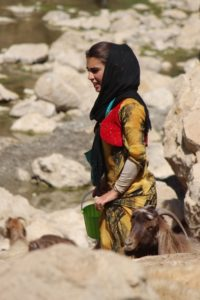 Kurdish girl milking the goats in Palangan