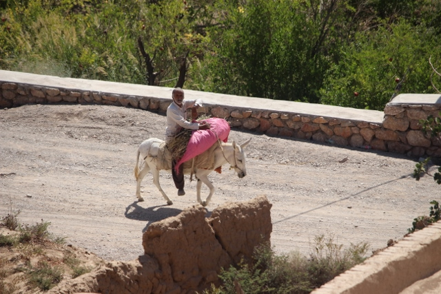 a man on a donkey, the only living thing in Kharanaq