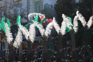 feathers and plumes, in close-up
