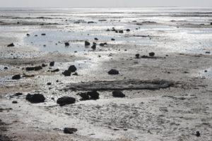 low tide in Al Jumail
