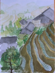C01-04: Longji rice terraces